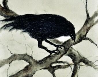"Original Charcoal Drawing Crow Art Dark Gothic 12x8"""