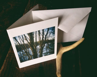 Blank cards featuring photography by Bekah Lunn - set of four