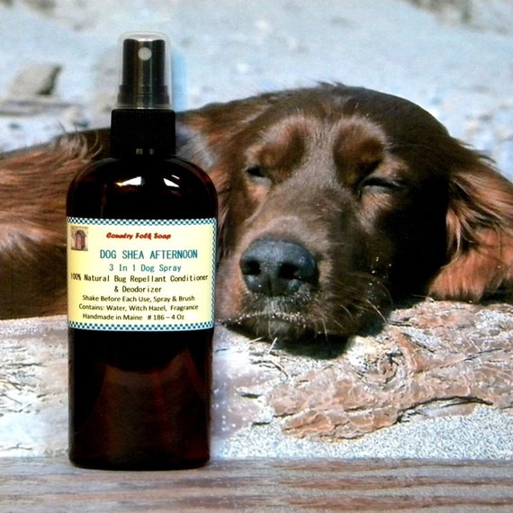 Dog Spray - DOG SHEA AFTERNOON Natural Dog Spray - Pet Grooming Deodorizer Bug Repellent Spray
