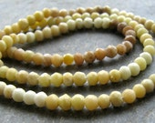 Serpentine Faceted Rondelles - FULL 13.5 inch strand of 3mm beads (3m15)