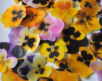 30 yellow lavender edible pansy flowers - edible flower -  wedding cake toppers - wedding favor - edible cupcake toppers by Uniqdots on Etsy