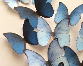 NEW ITEM 3D decorative butterflies - wall decoration - butterfly embellishment - 3D butterflies wall art by Uniqdots on Etsy