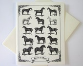 Horse Cards Set of 10 in White or Light Ivory with Matching Envelopes