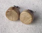 Oak Wood Stud/Post Earrings - Wooden Post Earrings Handmade from Wood Tree Branch - Natural Wood Jewelry gift idea