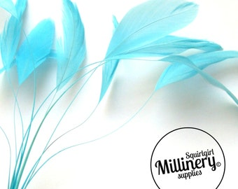 Stripped Coque Feather Hat Mount Turquoise (10 Feathers) for Millinery & Fascinators