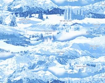 Winter Olympics Fabric 23177 B Blue Scenes Quilting Treasures