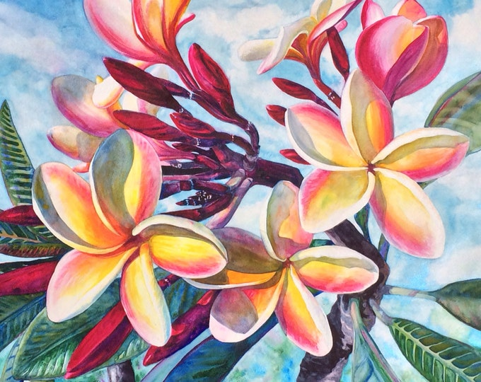 Tropical Plumeria Flowers, Original Large Watercolor Painting Art,  Watercolor Art, Beautiful Hawaiian Koa Wood Frame Artist Christie Elder