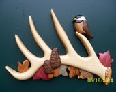 Deer antler intarsia wood carving with morel mushrooms, chickadees and leaves.