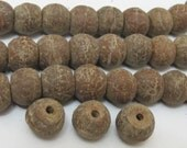 natural Bodhi seed  beads - 10 beads - NB053A