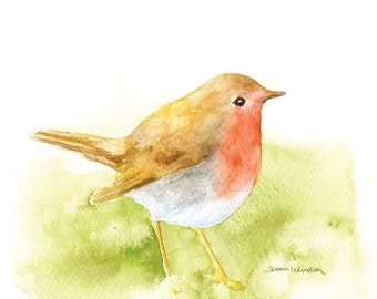 Robin Watercolor Painting - Giclee Print - Fine Art Print - 10 x 8 - Bird Painting 11 x 8.5