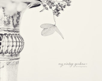 b & w hydrangea-flower photography - black - white flower photo- cottage garden (5 x 7 Original fine art photography prints) FREE Shipping)