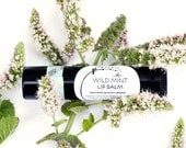 Wild Mint Lip Balm - organic herbal moisturizer - in black recycled-plastic tube