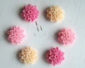 Pink Fridge Magnet Set of 6, Bright Pink, Light Pink, Cream