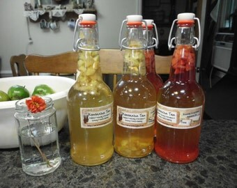 Kombucha Tea Flavoring Packets-Set of 4