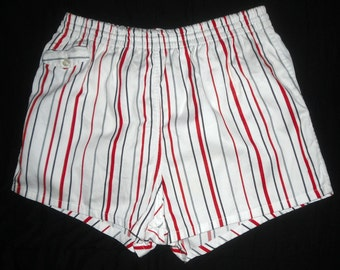 Vintage Jantzen Mens Swim Trunks Bathing Suit  with Pocket in Front for Change 32 to 38 waist Very Good Condition VLV