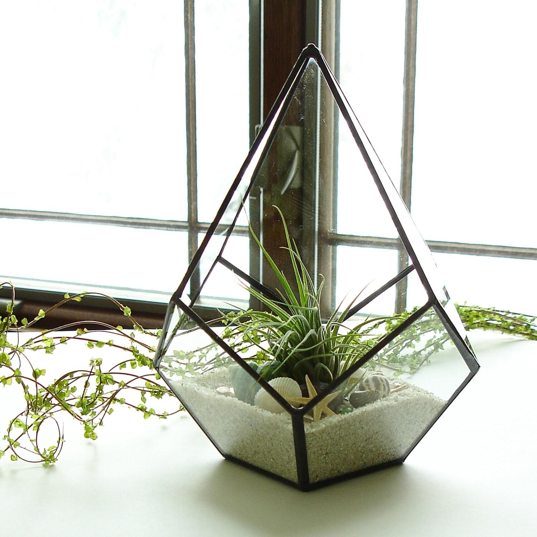 Terrarium geometric terrarium glass planter with air for Air plant planters