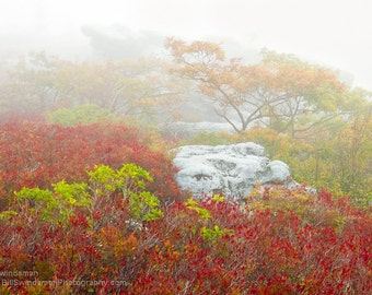 Foggy Fall West Virginia Landscape Photograph