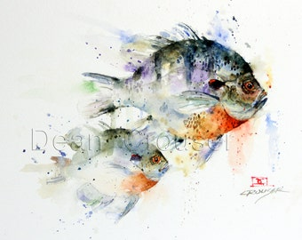 BLUEGILL Sunfish Watercolor Print by Dean Crouser