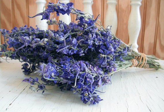 SALE  DRIED FLOWERS Lovely Petite Natural Dark Blue Larkspur Flower Bunch  Wedding, Cottage, Shabby, Prim