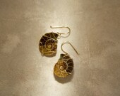 Ammonite Fossil Earrings - Chocolate Neutral Wire Wrapped Rustic Boho Tribal Jewelry