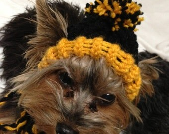 Black and Gold - Knit Dog Hat - Small or Medium