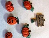 Pumpkin Patch Butttons