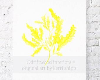 Seaweed in Marigold Print 11x14 - Sea Coral Wall Art - Seaweed Art Print