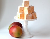 Mango Lime  Marshmallows 16 pieces