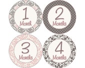 Baby Month Stickers, Girls Monthly Baby Stickers, Monthly Stickers, Monthly Bodysuit Stickers, Monthly Milestone Stickers, Pink Gray (G025)