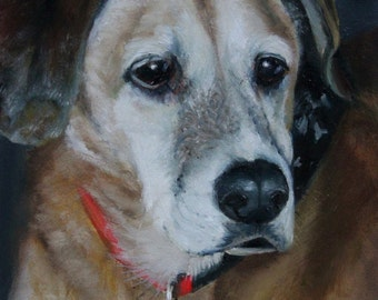 Custom Portrait from Photo - Pet Portait in Oil - High Quality Professional - Gift, Memorial, Mothers - Fathers Day, Christmas, Birthday