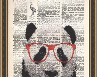 Panda bear sporting his red glasses illustration printed on a vintage dictionary page. Wall Art, Home Decor, Panda Art.