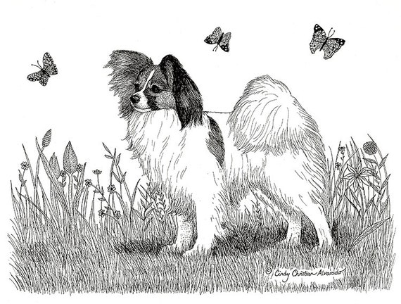 "Papillon print ""Spring Meadow"" by Cindy Alvarado"