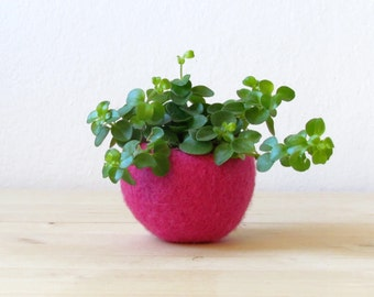 Felt succulent planter / felted terrarium / felt bowl / Succulent pod / cherry hot pink / minimalist design