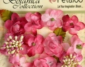 "Small Fushia Pink flowers Botanica Mini Petitie 1"" Flowers (11pcs) accent applique flower embellishment 1101-102 flat back floral"