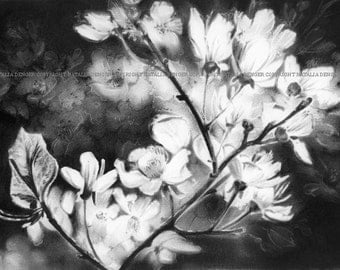 ORIGINAL Charcoal Drawing, FRAMED 16x20 Drawing, White Blossoms, Fruit Tree, Spring Flowers, White Flowers, Original Drawing, Special Gift