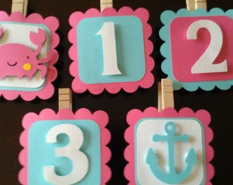 Nautical theme photo clips, beach photo clips, first year photo clips, girls photo clips, pink and aqua or pick your colors
