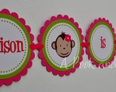 Pink and Green Girl Monkey Personalized High Chair Banner First Birthday Decoration