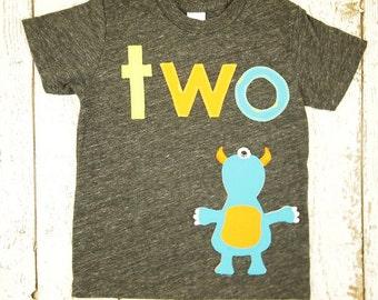 READY to SHIP second birthday shirt size 18/24 monster themed party birthday shirt Organic Blend boy's birthday tee