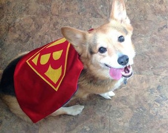 1 SUPERHERO Cape FOR DOGS Birthday and Party Gifts Special Occassions