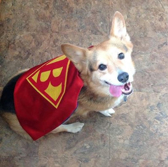 1 SUPERHERO Cape FOR DOGS and Kids for Birthday and Party Gifts Special Occassions