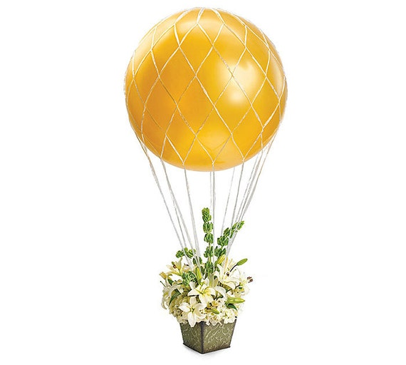 3 39 balloon net hot air balloon hugh 36 by sweetcreationsparty for Balloon nets for centerpieces