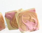 Fiji  Shampoo Bar , Organic Shampoo Bar, Sulfate Free Solid Shampoo for Natural Hair Care
