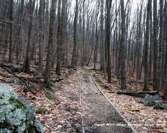 Abandoned Train Tracks - Blue Ridge-Virginia