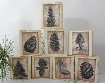 RUSTiC CHRISTMaS DECoR EiGHT CHuNKY WOODeN BLOCks PINECoNES TrEES MANtLe BOOKcASE STAcK EM DISPLaY