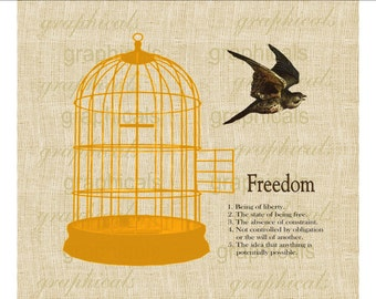 60's style Orange birdcage Bird Freedom Instant Digital download graphic image for Iron on fabric transfer Burlap Decoupage Pillows No. 1742