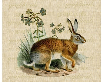 Brown rabbit GrassesWildflowers Instant Digital download image for iron on transfer burlap decoupage pillows scrapbooks totes No. 2121