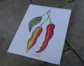 Red Chilies Hand Drawn Blank Card