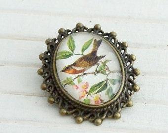 Bird Brooch .. bird jewellery, small bird brooch, animal brooch, oval brooch