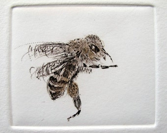 Little Bee. Drypoint honey bee print