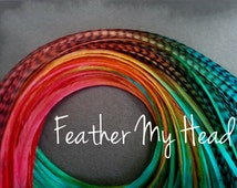 """10 Ombre Tie Dye Fade Feather Extension Whiting Grizzly Rooster Feathers Medium Length 7""""-9""""  Multi Colored Durango Mix"""
